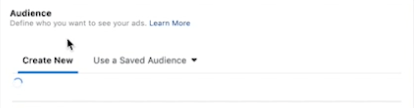 Facebook Ad Campaign Audience
